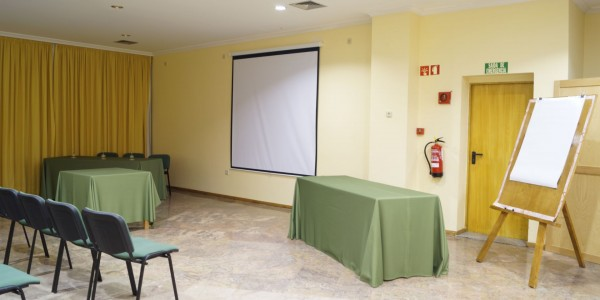 hotel-dom-dinis139auditorio